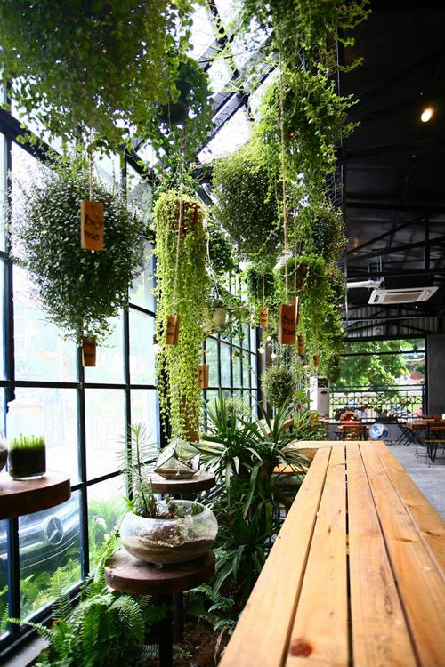 thiet-ke-noi-that-quan-cafe-cay-tai-van-bao-hn