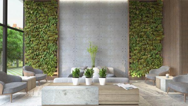Thiết kế nội thất phòng khách phong cách hiện đại kết hợp cây