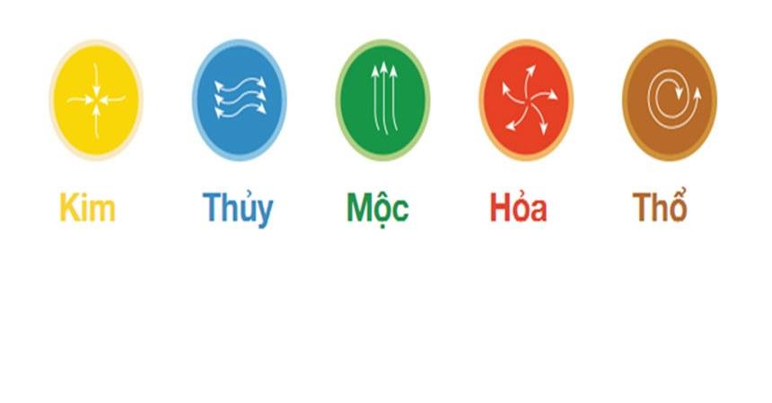 moc-sinh-hoa-va-ung-dung-thuc-te-3