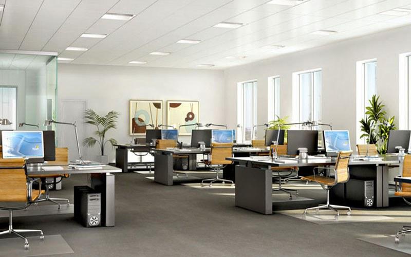 Kết hợp màu sắc hài hòa giữa sơn tường, đèn điện và nội thất tạo nên một không gian làm việc thoải mái, hiệu quả.