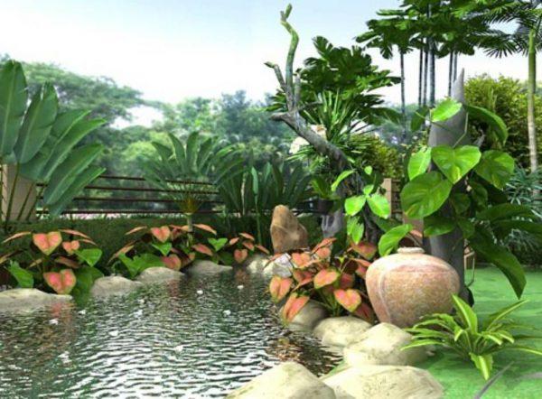 Vườn đẹp