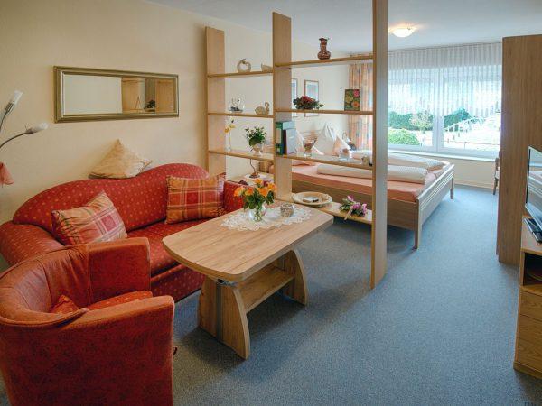 Phòng khách kết hợp với không gian sinh hoạt khác