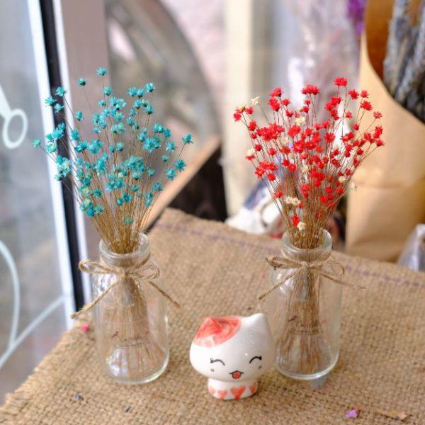 Hoa khô cắm lọ trang trí bàn làm việc phong cách hàn quốc