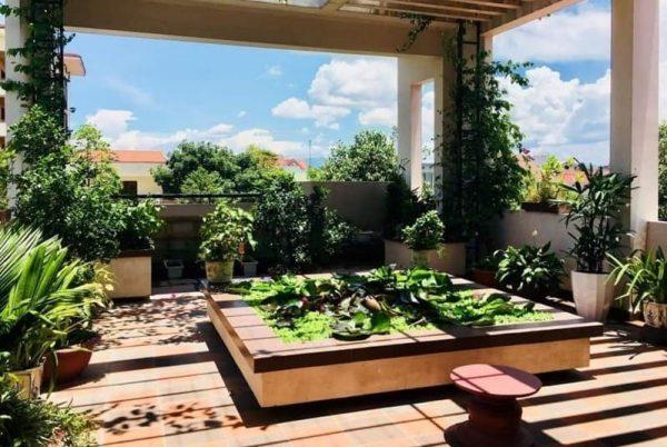 Mẫu thiết kế nhà cấp 4 sân vườn xanh mát