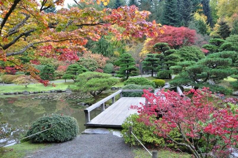 biệt thự sân vườn kiểu Nhật 1