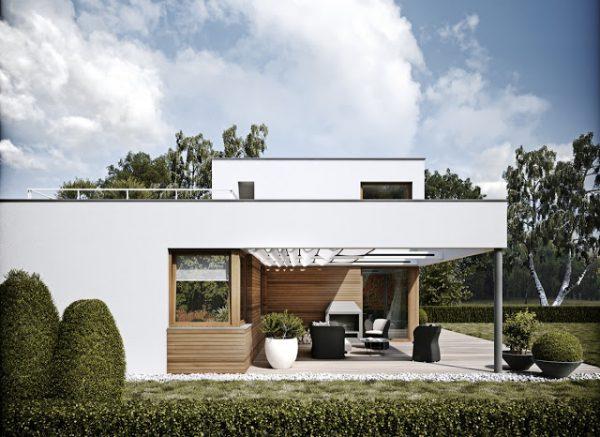 chọn sử dụng những chậu cây đẹp có hình dáng lạ mắt để giúp tạo không gian xanh trong nhà.