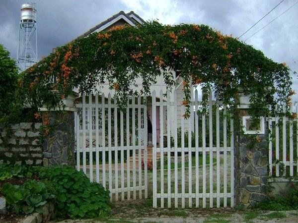 Cổng nhà đẹp ở nông thôn