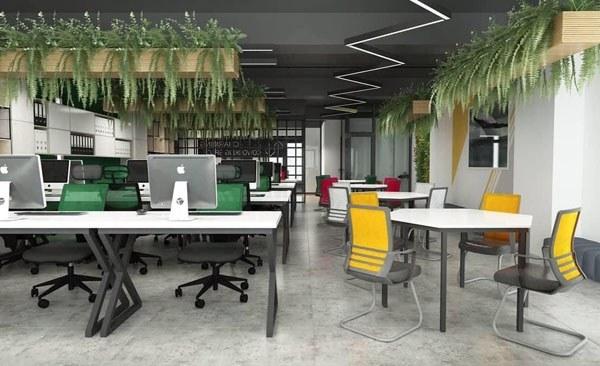 Văn phòng mở thoải mái và kích thích sự sáng tạo
